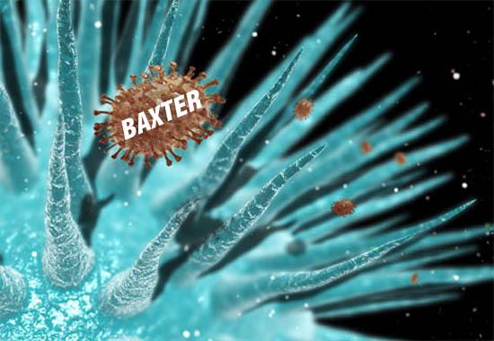 Вирусът Baxter в атака