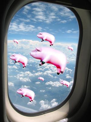 Свинщини в атака